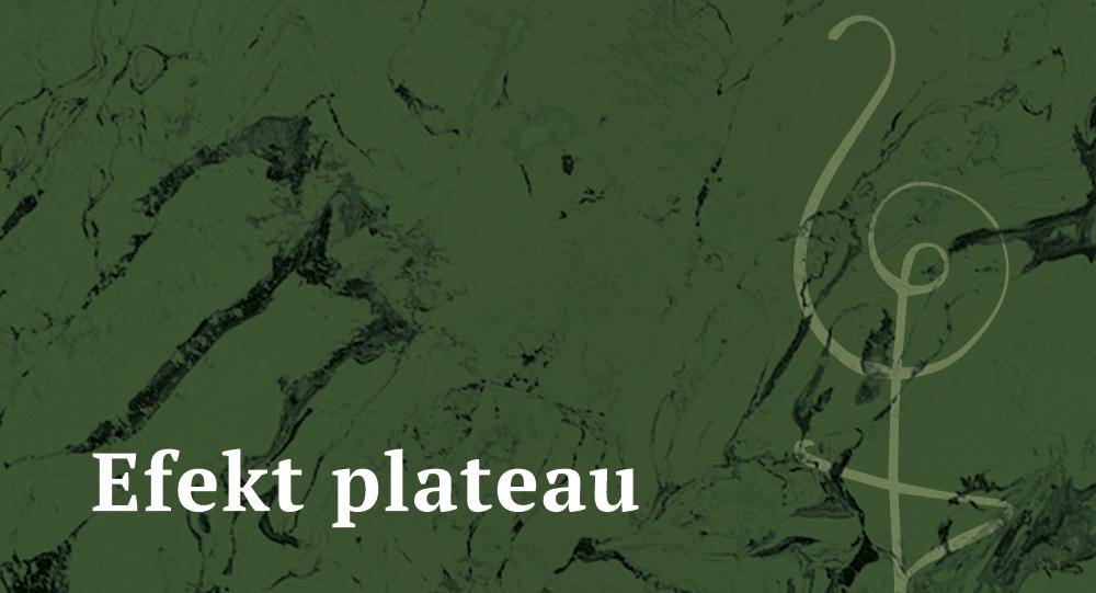 efekt-plateau-psychodietetyczka